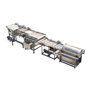Pea Processing Equipment
